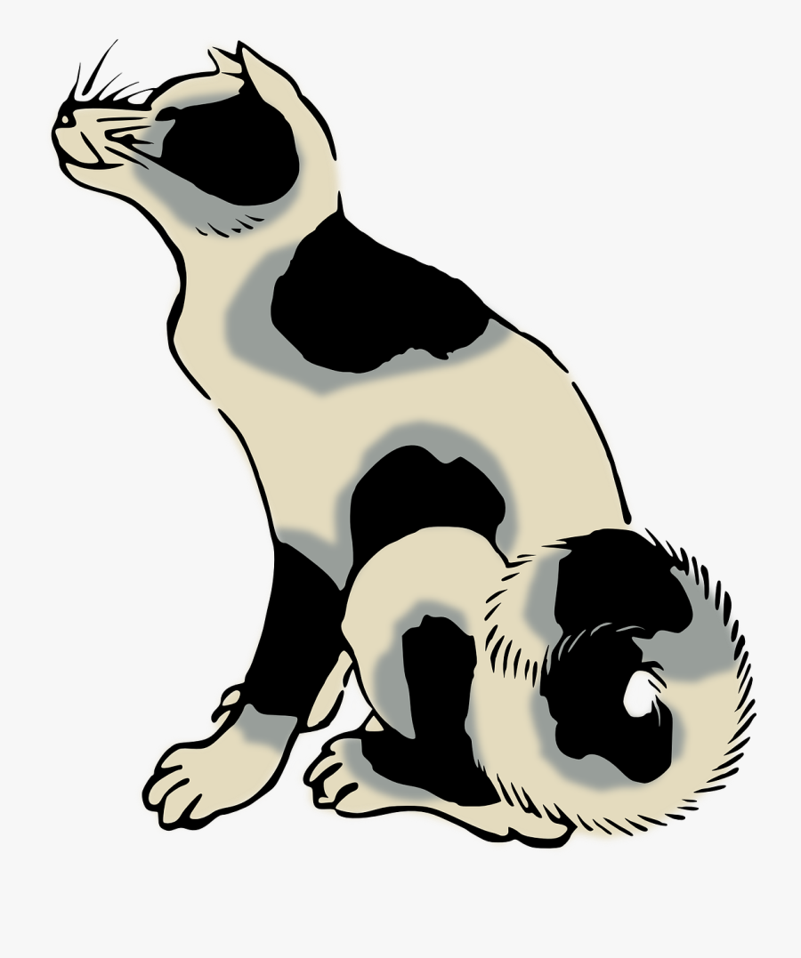 Wildlife,paw,small To Medium Sized Cats - Clip Art, Transparent Clipart