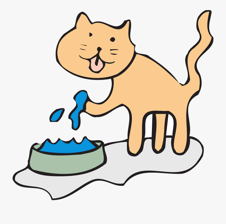 Cat Clipart Water Bowl - Drink Water Animals Clipart, Transparent Clipart
