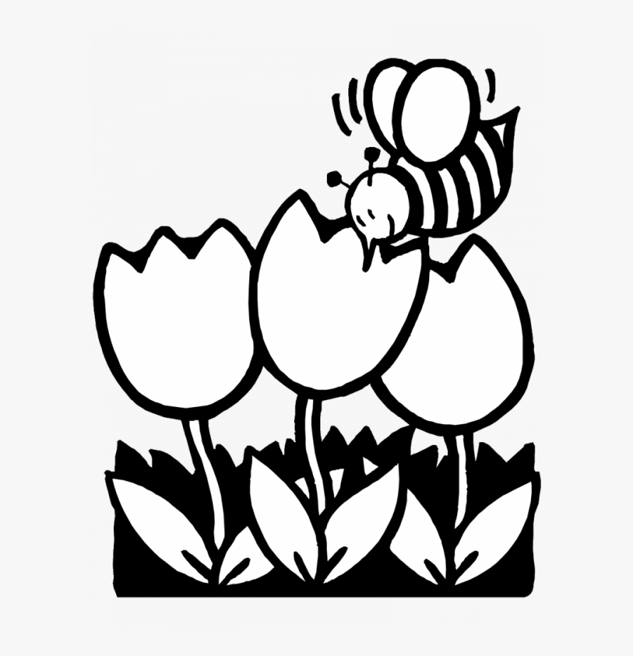 Bees And Tulips Coloring Pages For Kids Easy Coloring - Spring Flowers Clip Art Black And White, Transparent Clipart