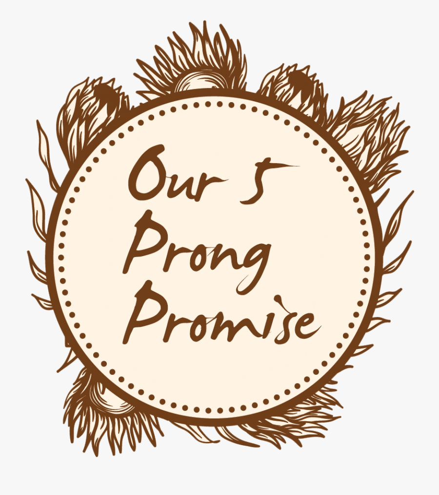 We Love The Gong, Transparent Clipart