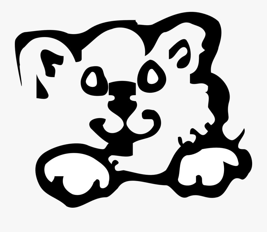 Cat, Face, Cute, Animal, Feline, Kitten - Galna Katt Bilder Med Text, Transparent Clipart