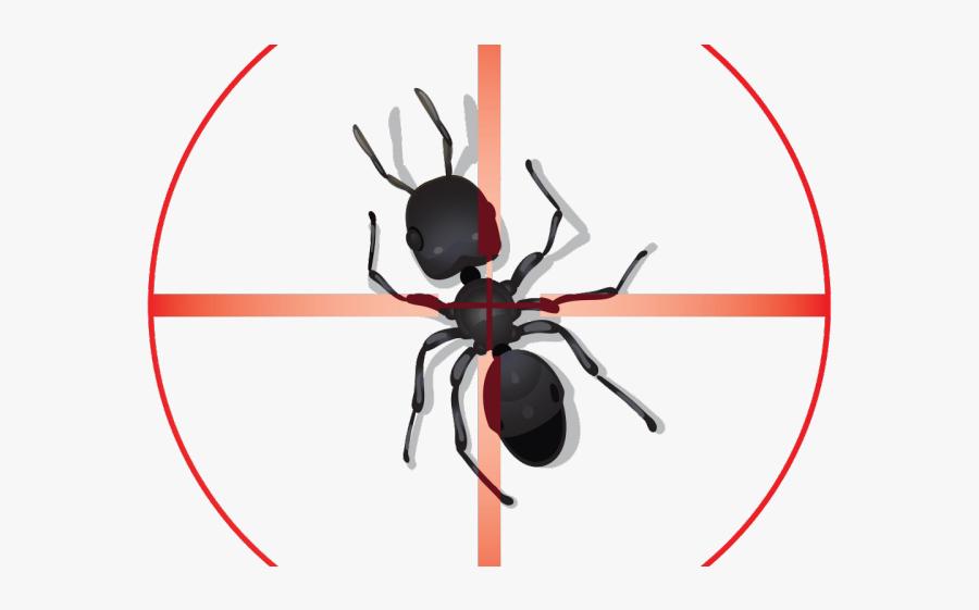 Background Pest Control, Transparent Clipart
