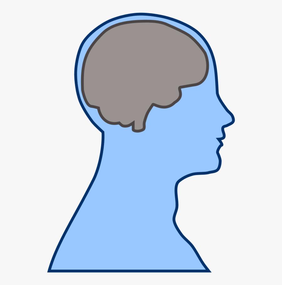 Transparent Brain Clip Art - Cartoon Head With Brain, Transparent Clipart