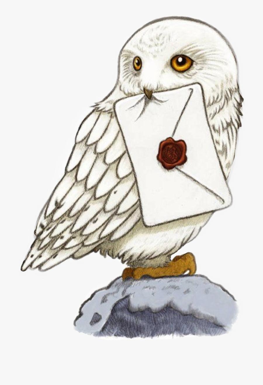 Sticker Hogwarts Harrypotter Freetoedit - Harry Potter Hedwig Drawing, Transparent Clipart