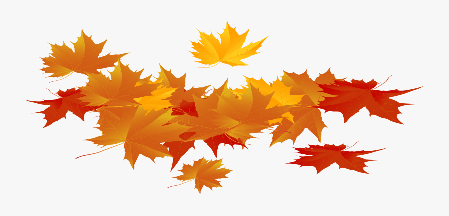 Thanksgiving Leaves Png - Leaves Fall Season Png, Transparent Clipart