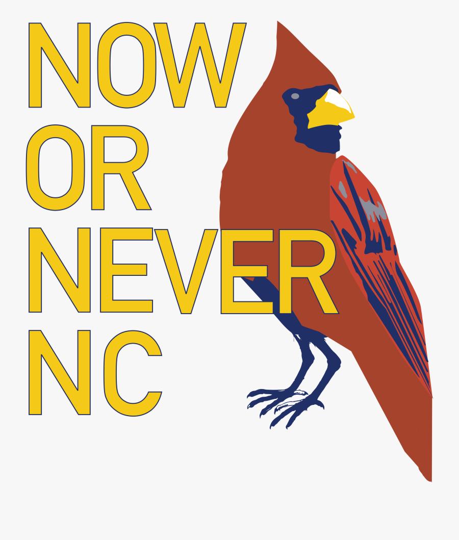 Newlogo5nostar - Illustration, Transparent Clipart