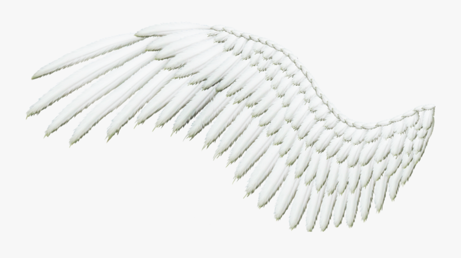 Transparent Angels Wings Clipart - Demon Wing Side Png Transparent, Transparent Clipart