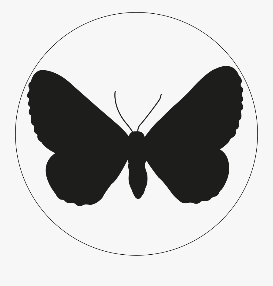 Lost In Light Luise Kalkbrenner - Butterfly, Transparent Clipart