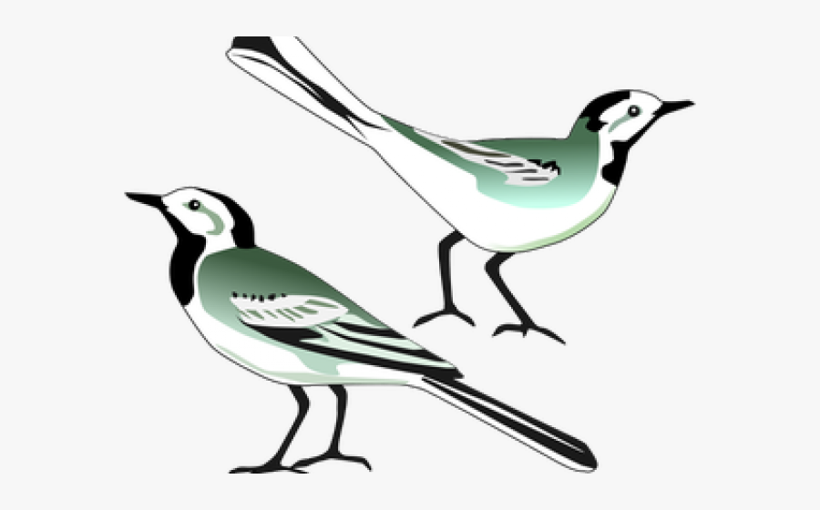 mockingbird clipart burung burung png free transparent clipart clipartkey mockingbird clipart burung burung png