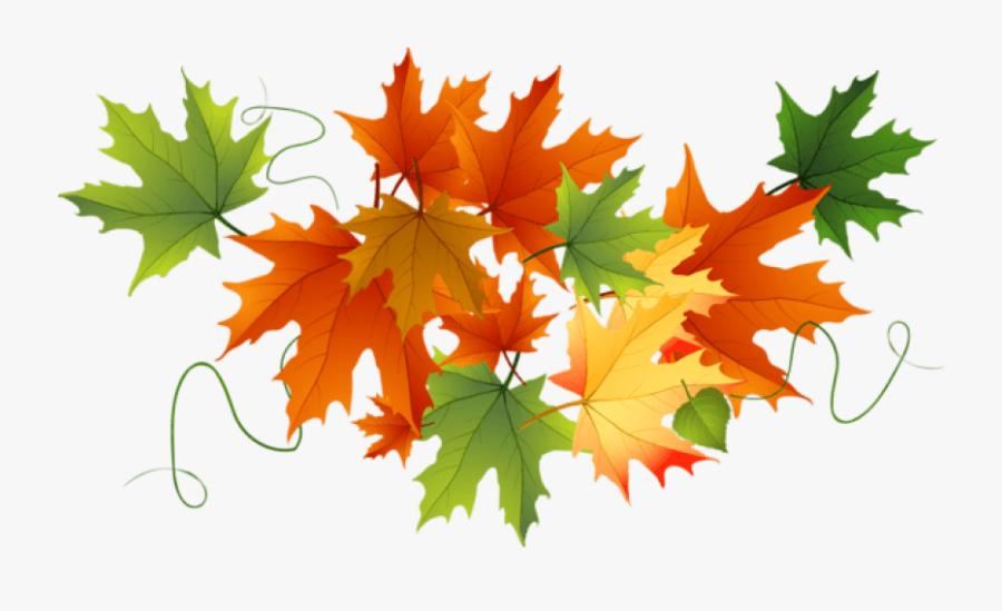 Free Png Download Autumn Transparent Leaves Clipart - Autumn Leaves Clipart Transparent Background, Transparent Clipart