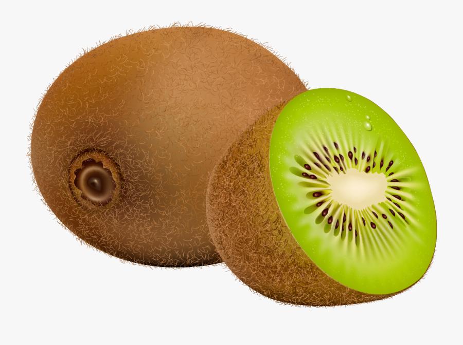 Kiwi Fruit Png Clipart - Kiwi Fruit Clipart, Transparent Clipart