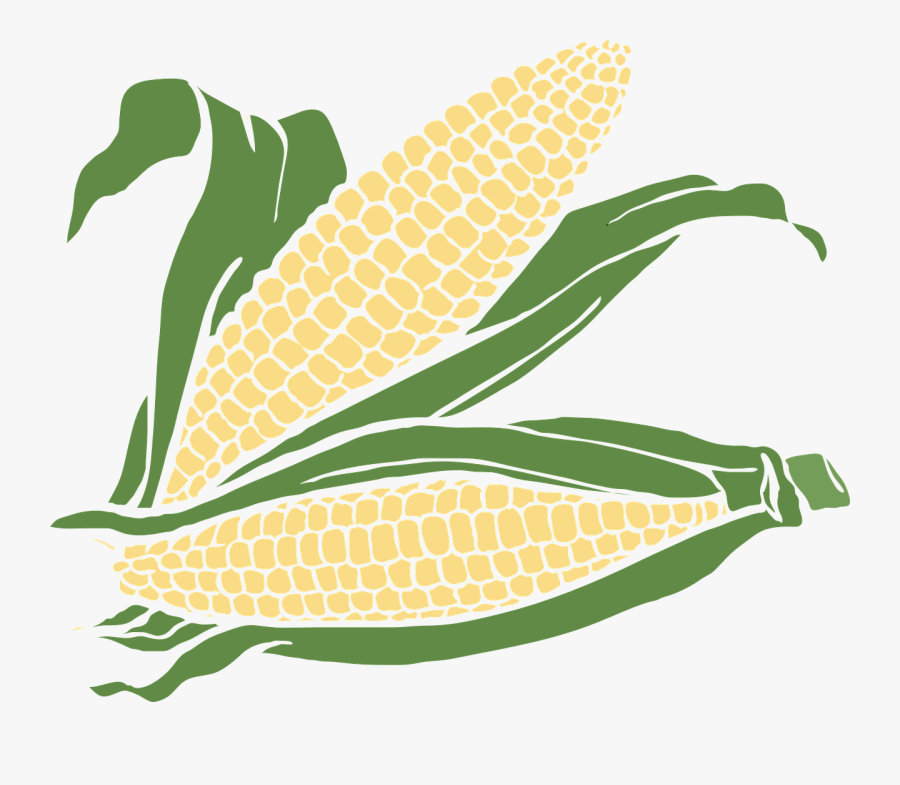 Transparent Corn Plant Png - Ear Of Corn Clip Art, Transparent Clipart