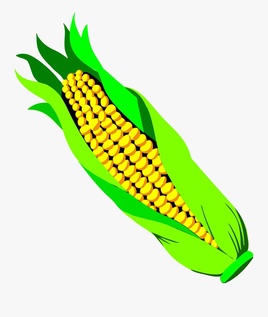 Corn - Ear Of Corn Transparent Background, Transparent Clipart