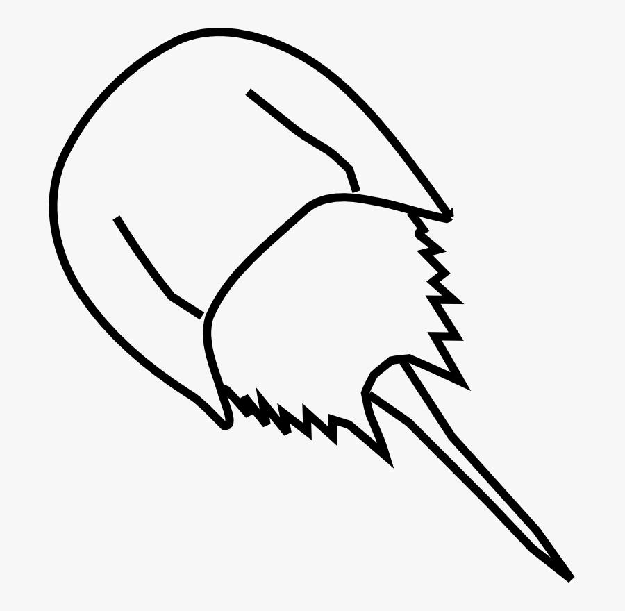 Draw A Horseshoe Crab, Transparent Clipart