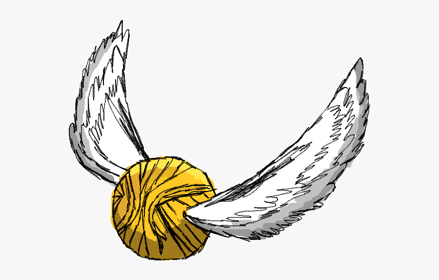 Harry Potter Quidditch Drawing, Transparent Clipart
