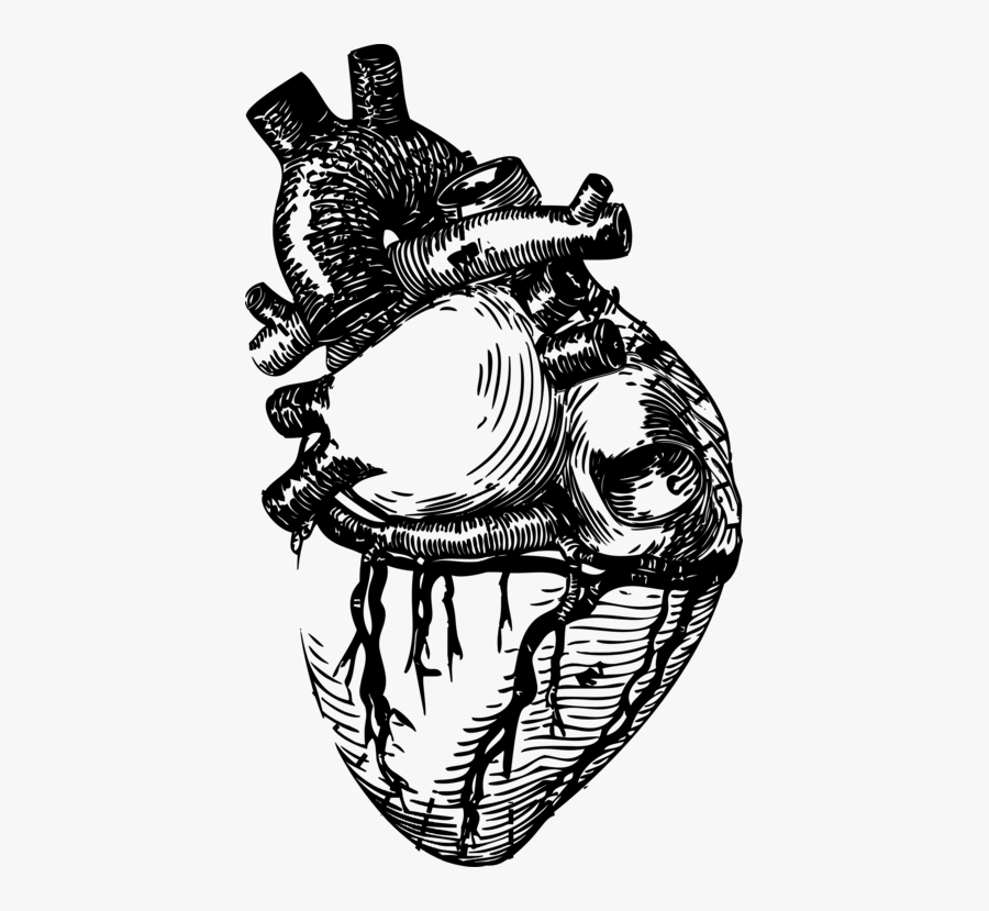Art,monochrome Photography,headgear - Human Heart Clipart Black And White, Transparent Clipart