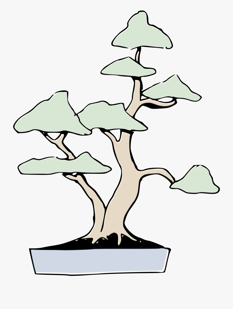 Bonsai Clipart , Png Download - Twin Trunk Bonsai, Transparent Clipart