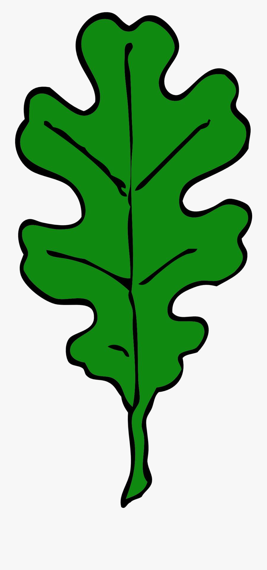 Forest, Oak Leaf, Green, Leaf, Tree, Leaves, Oak - Brown Oak Leaf Clipart, Transparent Clipart