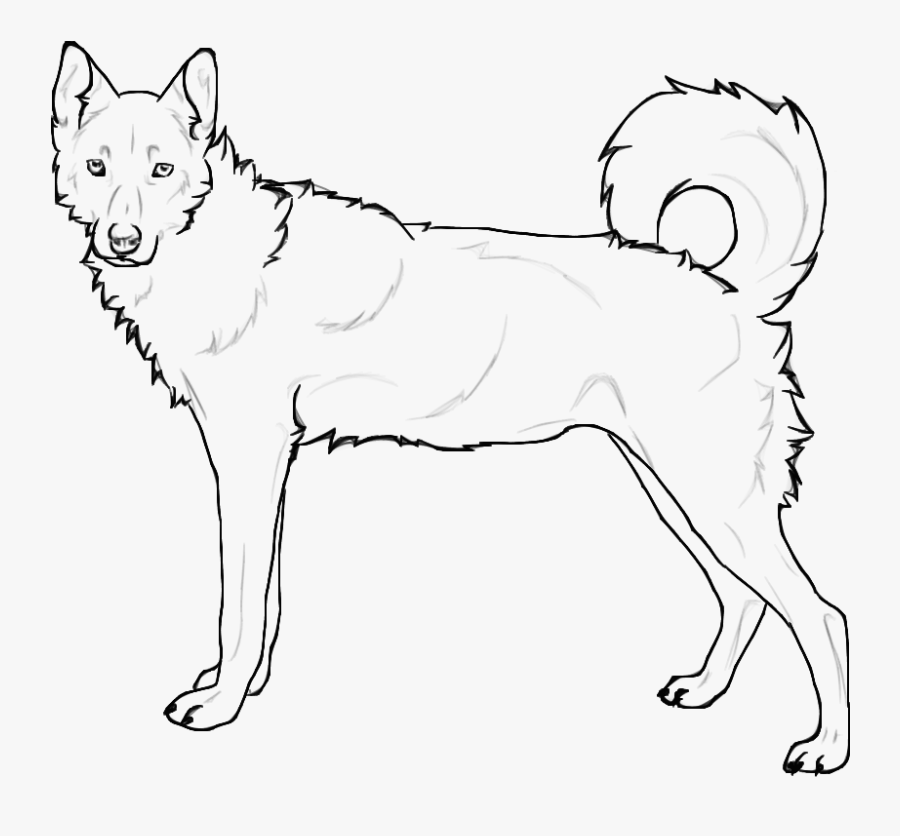 - Siberian Husky Coloring Page , Free Transparent Clipart - ClipartKey
