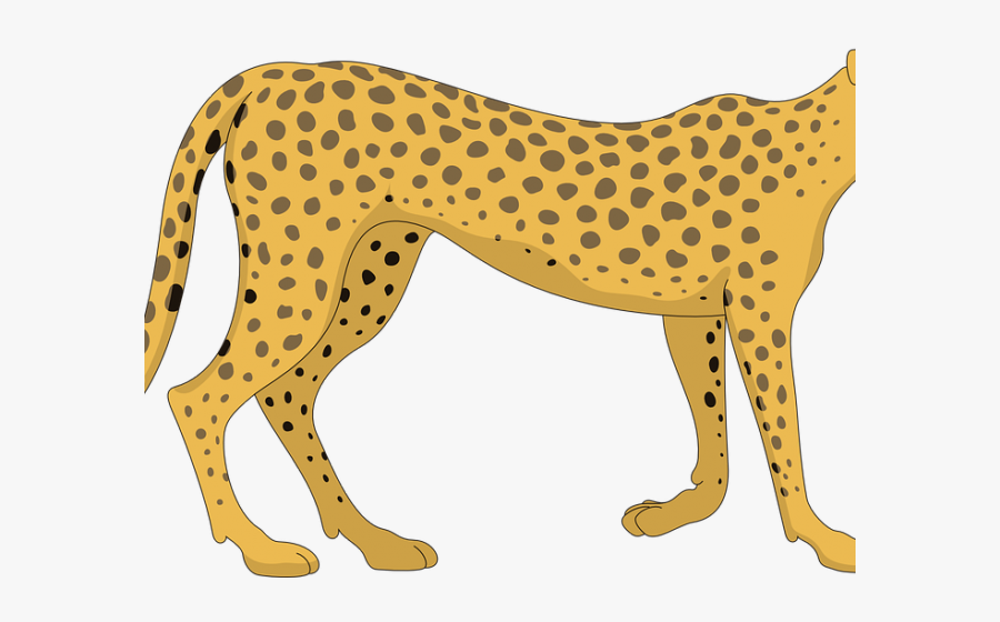 Cartoon Cheetah Png, Transparent Clipart