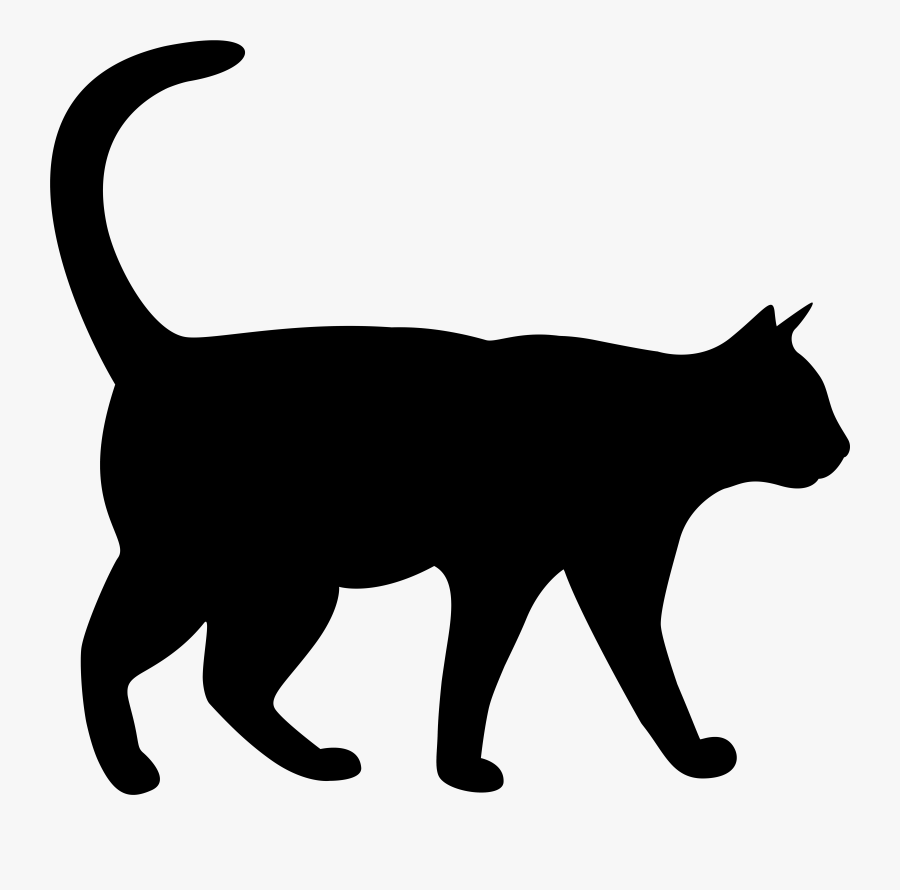 Curious Cat Cliparts, Transparent Clipart
