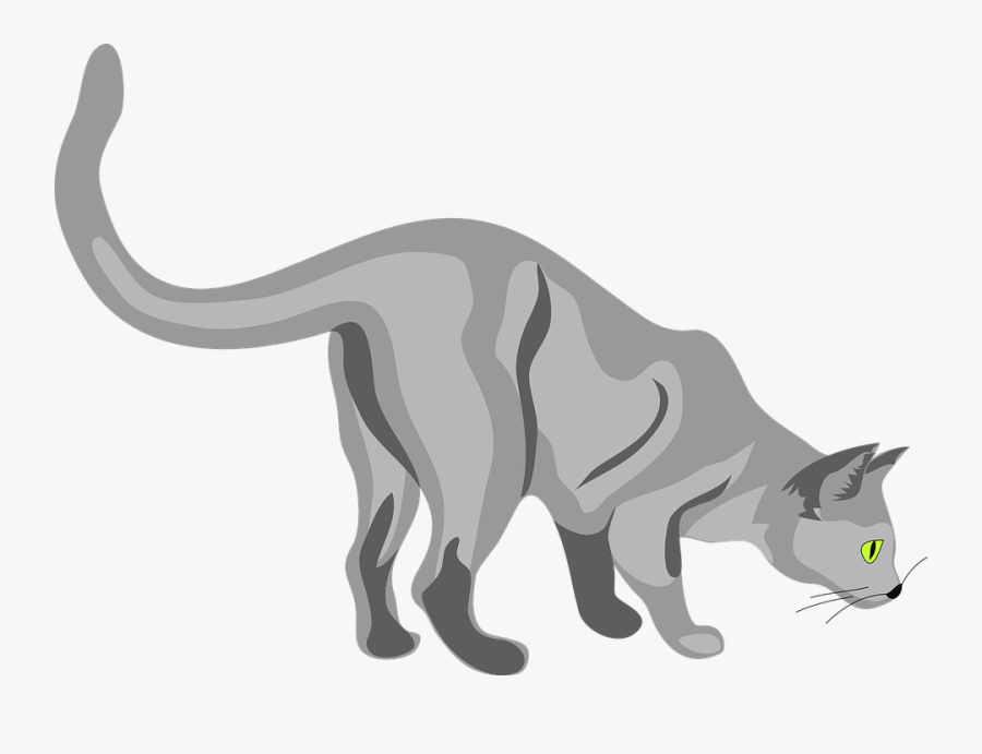 Cat, Curious, Sniffing, Feline, Pet, Tail, Mammal - Cat Sniffing The Ground, Transparent Clipart