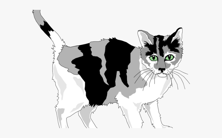 Kitten Clipart Gray Cat - Grey And White Cat Clipart, Transparent Clipart
