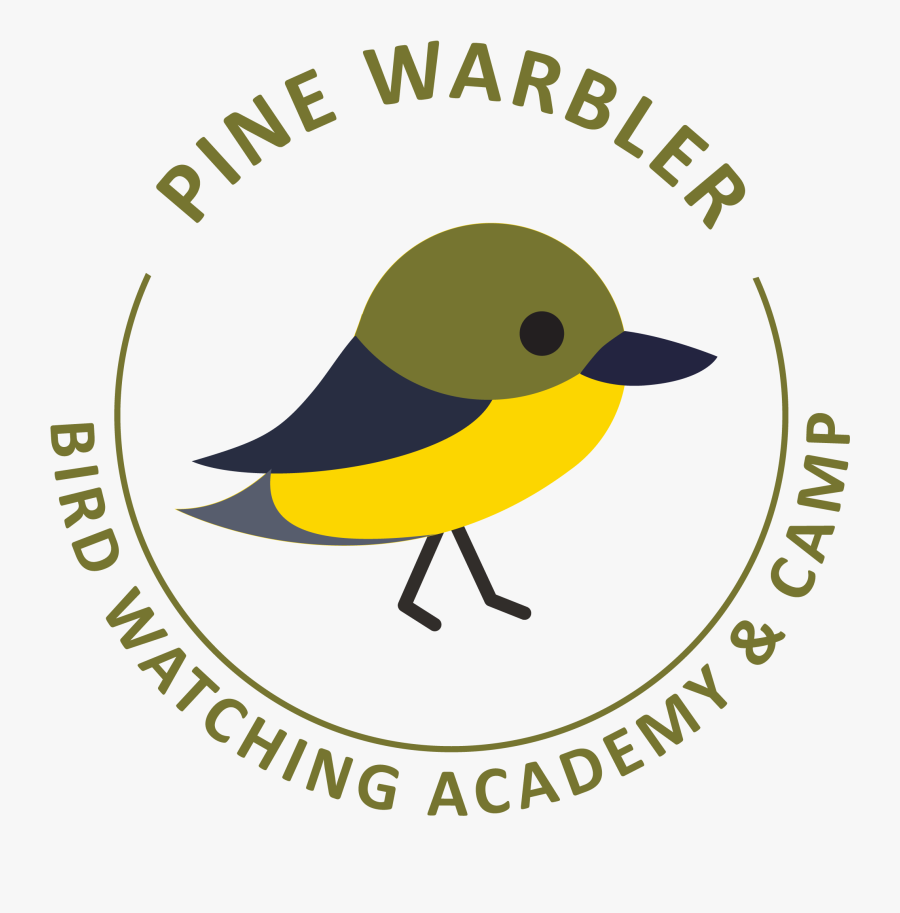 Golden-winged Warbler Clipart , Png Download - Organic, Transparent Clipart