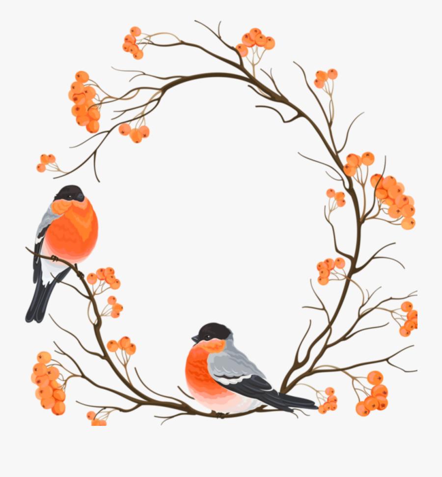 Transparent Bird On Branch Clipart Oiseau Sur Branche Dessin