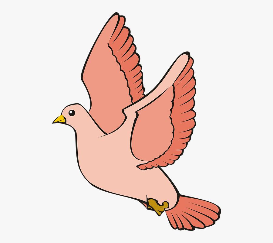 74 747279 transparent pigeon clipart desain gambar burung merpati