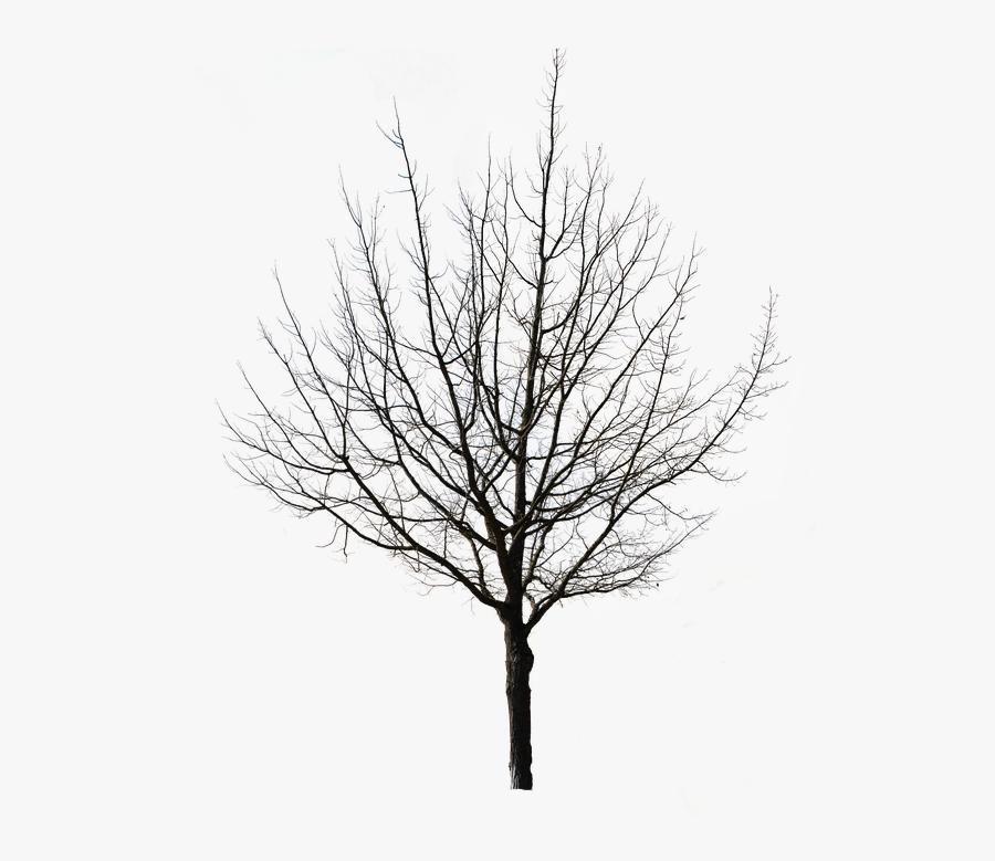Christmas tree black and white snow christmas tree clipart black and white  clipartfest - WikiClipArt
