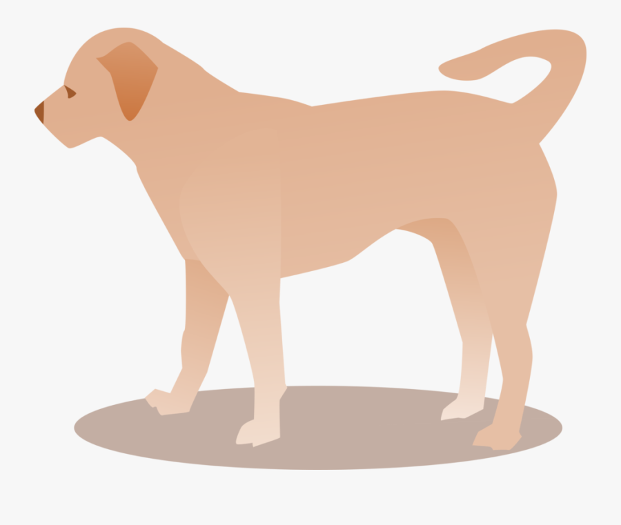 Group,animal Figure,rare Breed ,ancient Dog Breeds,clip - Ancient Dog Breeds, Transparent Clipart