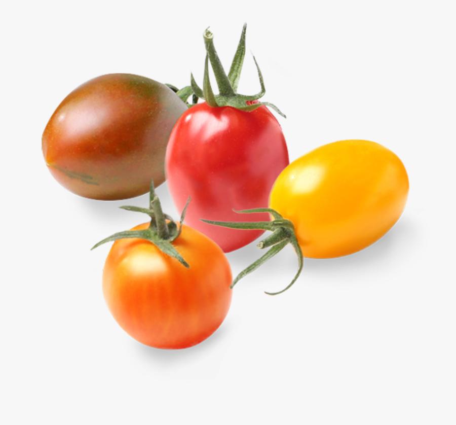 Plum Tomato, Transparent Clipart