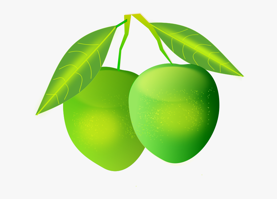 Mango - Green Mangoes Png , Free Transparent Clipart ...