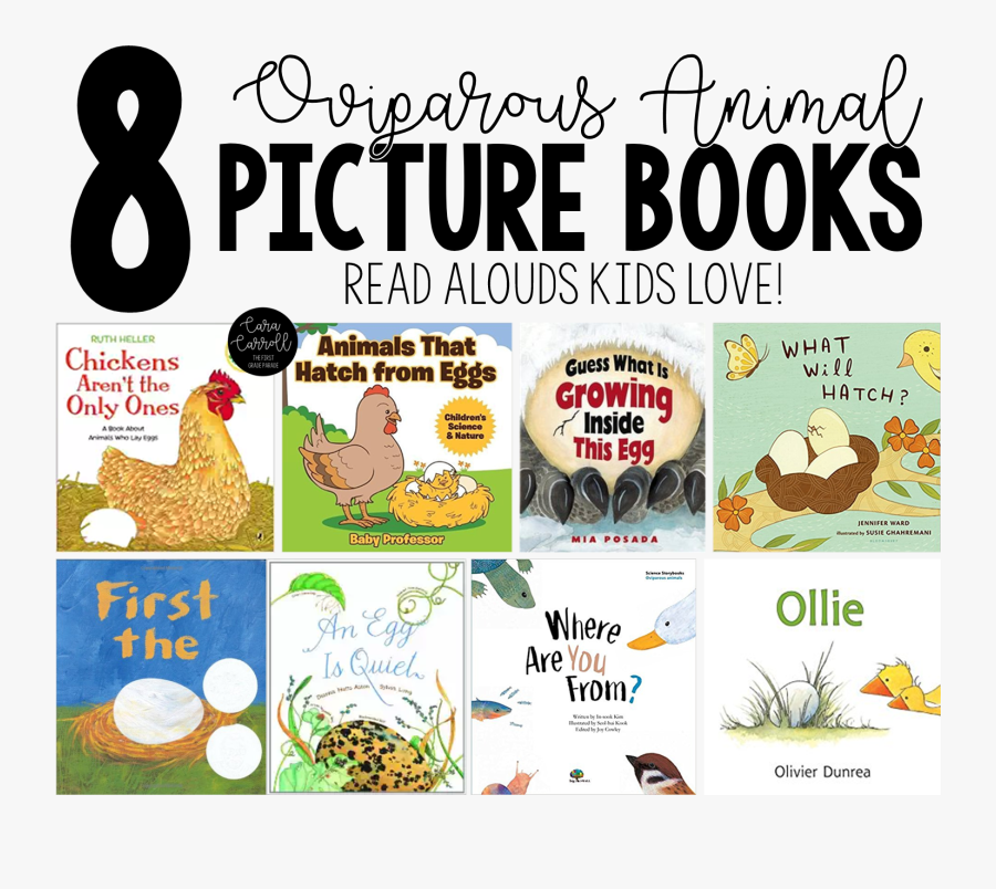 Learning About Oviparous Animals - Children's Books About Oviparous Animals, Transparent Clipart