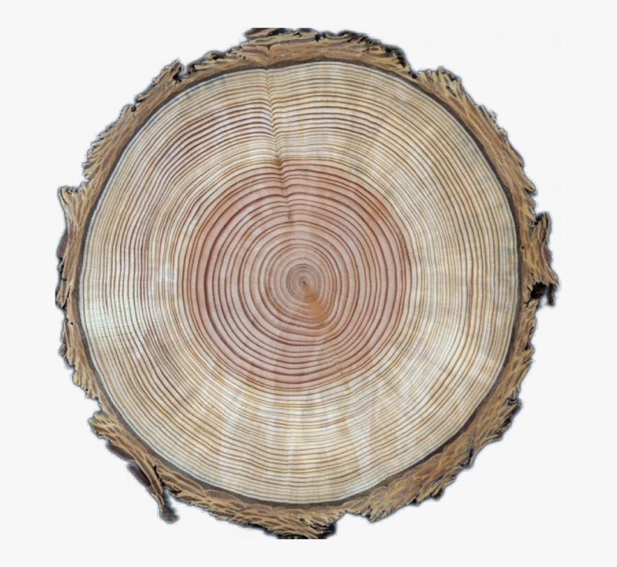 Wood Circle Transparent Image, Transparent Clipart