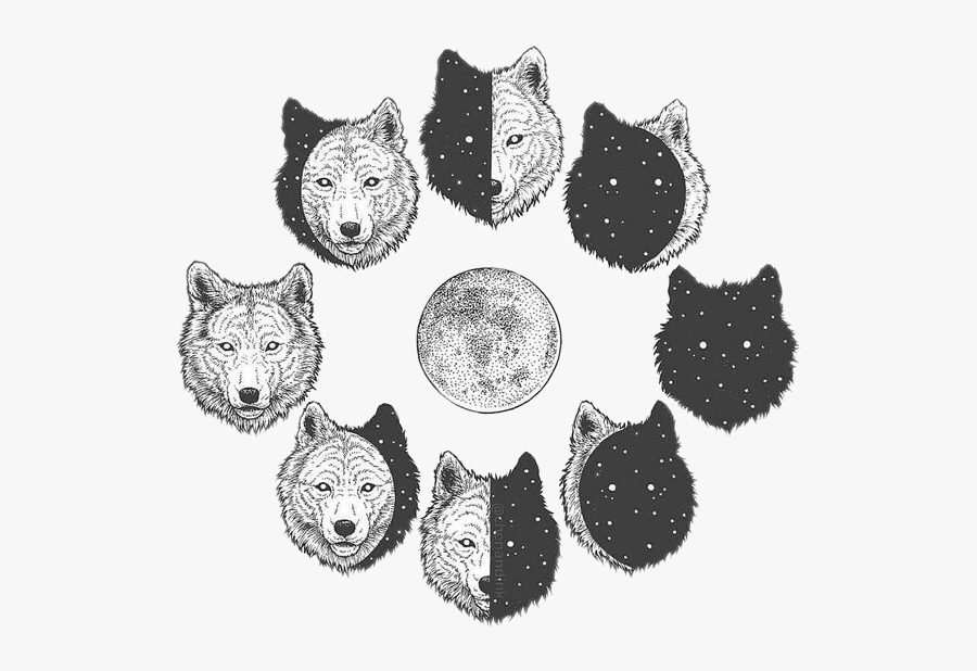 78-785446_freetoedit-wolf-wolves-moon-moonphases-night-wolf-and.png