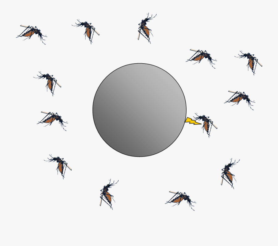 Bug Zappers And Electrostatics The Smoluchowski Diffusion - Flying Transparent Insect Mosquito Mosquito Png, Transparent Clipart