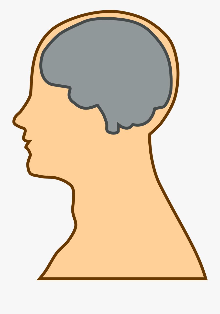 Transparent Human Brain Clipart - Process Of Kansei, Transparent Clipart