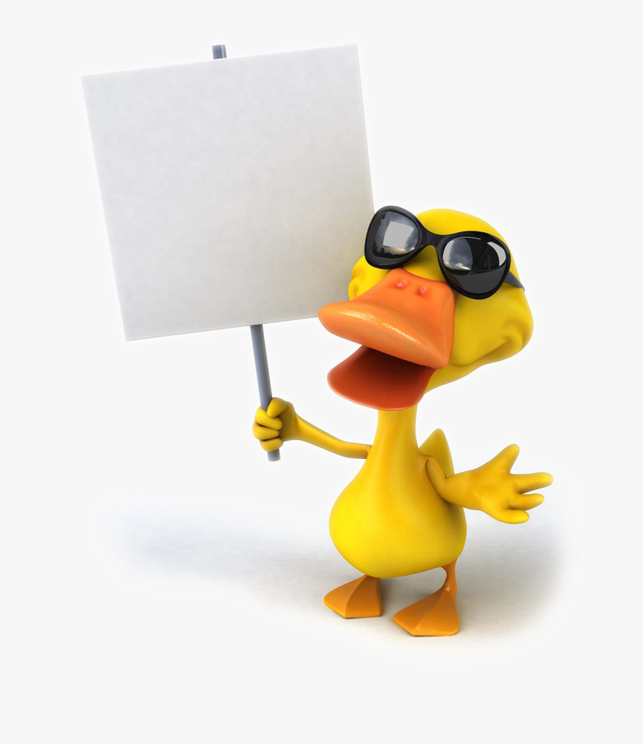 Pictures Photography Drawing Mallard Duck Cartoon Stock - Signboard Stock Big Signboard Cartoon Duck Holding, Transparent Clipart