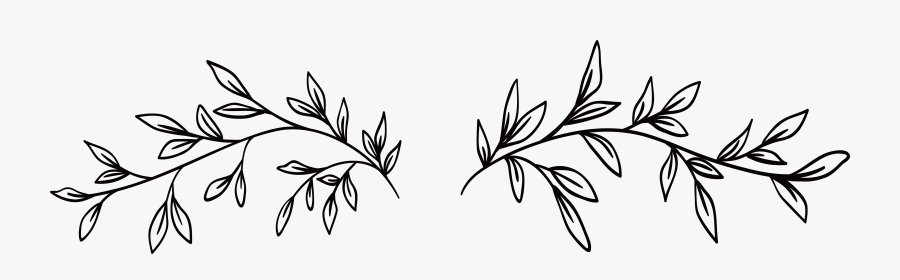 Black And White - Black And White Vine, Transparent Clipart
