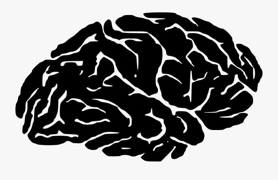 Organ,monochrome Photography,brain - Brain Silhouette Png, Transparent Clipart