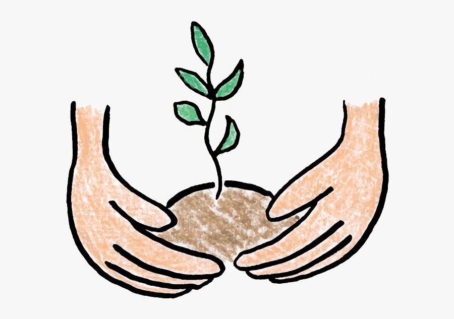 Corn Plant Growing Clipart - Tree Planting Clip Art, Transparent Clipart