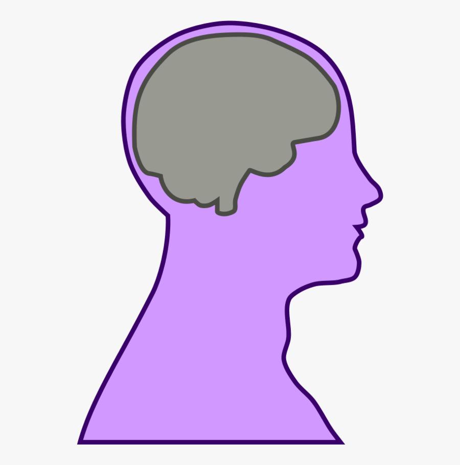 Brain Human Man - Head Outline With Brain, Transparent Clipart