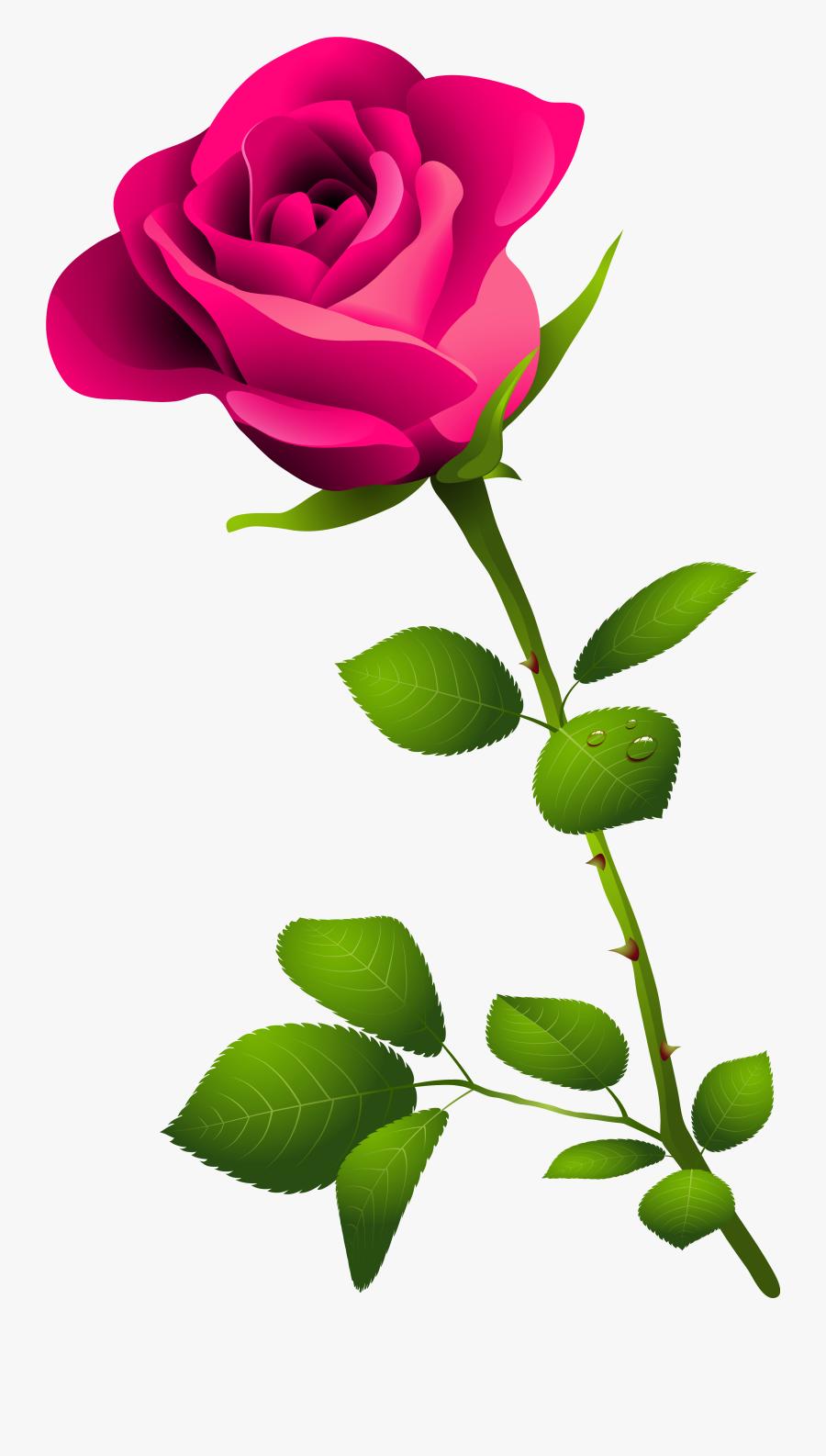 Top 81 Pink Rose Clip Art - Pink Rose With Stem, Transparent Clipart