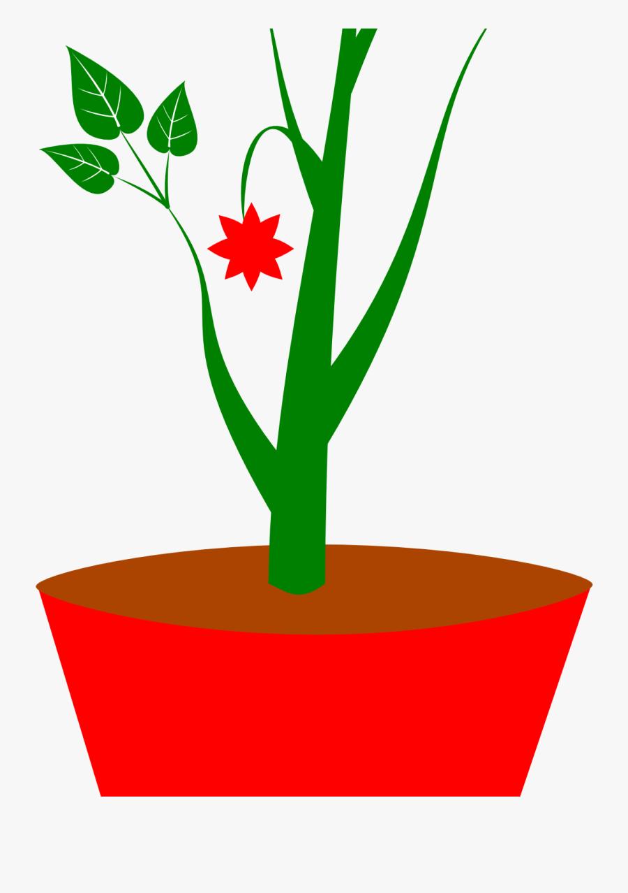 Plants Clipart Potted Plant Gambar Pot Bunga Kartun Free