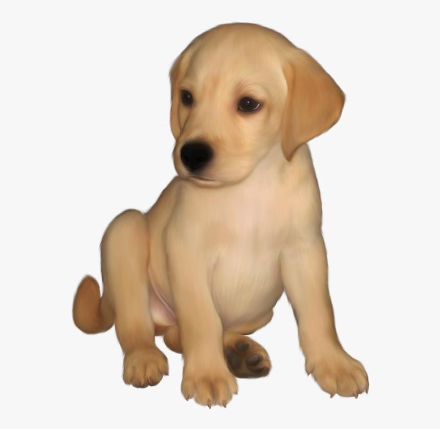 Puppy Clipart Yellow Lab - Golden Retriever Dog Clipart, Transparent Clipart
