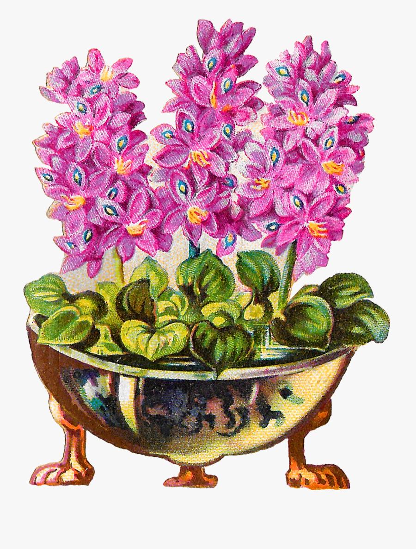 Flower Pot Plant Vintage Clipart Illustration Botanical - Flower Pot Vintage Illustration, Transparent Clipart
