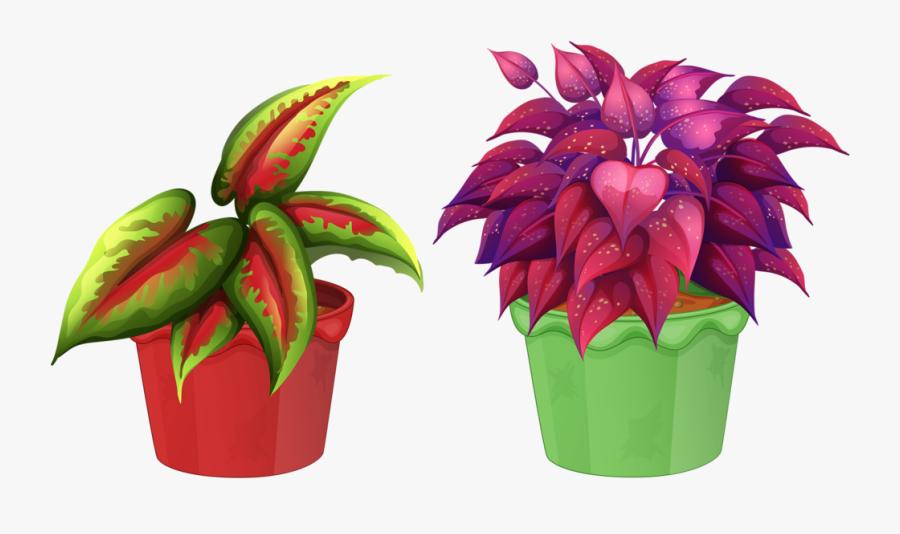 8 Garden Clipart, Flower Pots, Flowers, Views Album, - Flower In Flower Pot Clipart Png, Transparent Clipart