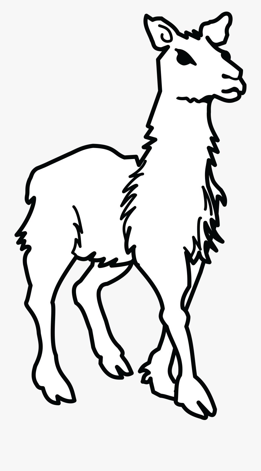 Clipart Llama Lineart - Drawing Of Llamas And Alpacas, Transparent Clipart
